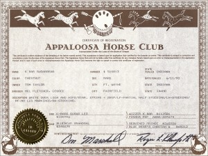 SugarBear-certificate